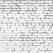 Teared piece of paper on the white painted brickwall — Stock Photo