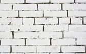 Teared piece of paper on the white painted brickwall — Стоковое фото