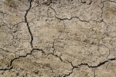 Dusty craced soil surface can be used as a background — Stock Photo