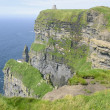 Cliffs of Moher (Ireland) — Stock Photo