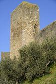 The walls of Monteriggioni — Stock Photo