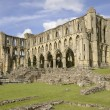 Rievaulx Abbey — 图库照片