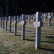 AmericWer Cemetery — Stock Photo #41091337