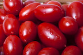 Small oblong red ripe tomatoes — Stock Photo