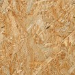 Stock Photo: Oriented strand board.