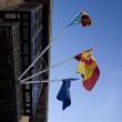 Spainish flags — Fotografia Stock  #3125517