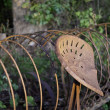 Rusty Hay Rake in the Evening Sun - Stock Photo