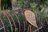 Rusty Hay Rake in the Evening Sun — Stock Photo