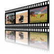 Filmstrip of Domestic Farm Animals — Stock Photo