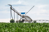 Center Pivot Irrigation System in Cornfield — Stock Photo
