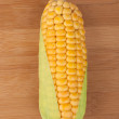 Corn in cob — Stock Photo
