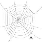 örümcek ağı — Stok Vektör