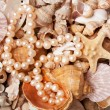 Pearl nacklace on a sea shell background - Stock Photo