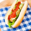 Hot dog with ketchup and cucumbers — Stock Photo