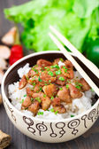 Bowl of rice with meat — Стоковое фото