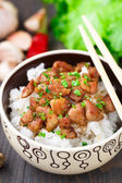 Bowl of rice with meat — Photo