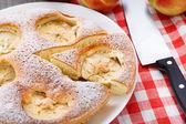 Freshly baked apple pie — Stock Photo