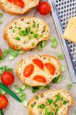 Bruschetta with cherry tomatoes and scallion — Stockfoto
