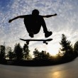 Stock Photo: Skateboarding silhouette