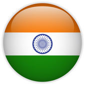 India Flag Glossy Button — Stock Vector