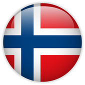Norway Flag Glossy Button — ストックベクタ