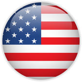 United States Flag Glossy Button — Vector de stock