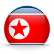 North Korea Flag Glossy Button — Stock Vector