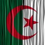 Algeria Flag Wave Fabric Texture — Stock Vector #34708739