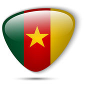 Cameroon Flag Glossy Button — Stock Vector