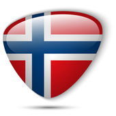 Norway Flag Glossy Button — Stock Vector