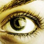 Great big eye. — Stock Photo #19736301