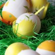 Painted easter eggs — Stock Photo #22965954
