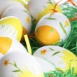 Painted easter eggs — Stock Photo #22966014