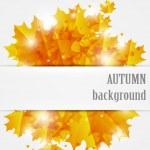 Autumn background — Stock Vector #12676705