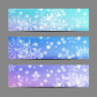 Set of snowflake banners — Stock Vector