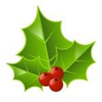 Christmas holly — Stock Vector #16334585