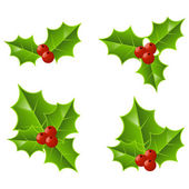 Set of Christmas holly icons — Stock Vector