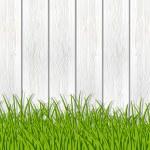 Green grass near wooden fence — Stock Vector #19858345