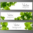 Floral horizontal banners with place for text — Stock Vector