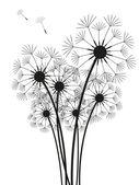 Dandelions — Stock Vector