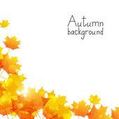 Höstens bakgrund med plats för text — Stockvektor