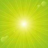 Sunny rays on green backgrund — Stock Vector