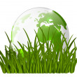 Earth globe on green grass — Stock Vector