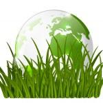 Earth globe on green grass — Stock Vector