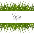 Green grass background with place for text — 图库矢量图片