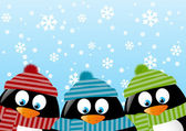 Cute penguins — Stock Vector