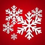 Paper snowflakes — Stock Vector