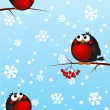 Funny bullfinches on rowan branches — Grafika wektorowa