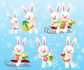 Set of funny rabbit characters — Stock Vector