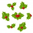 Christmas holly leaves — Stock Vector
